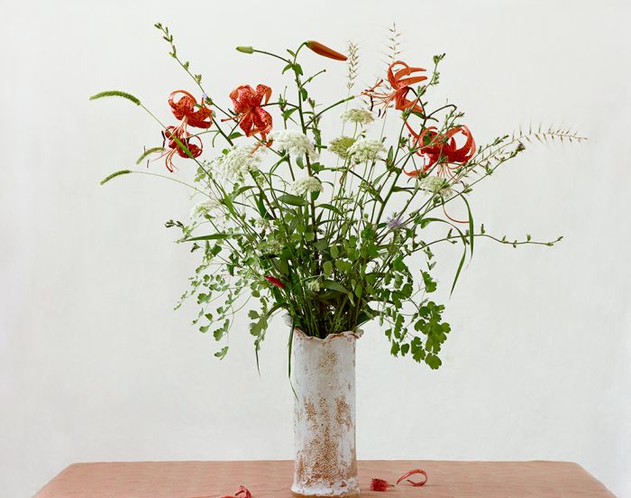 Turk's Cap Lily, Eastern Bottlebrush, Timothy-grass, Greater Meadow-rice, Queen Anne's Lace, 45-1207-04-18, Archival Pigment Print—8x10, 16x20, 32x40, 40x50