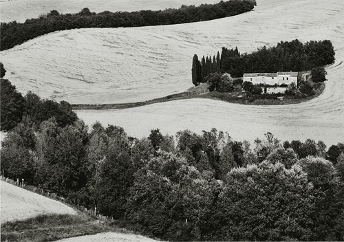 "San Giovanni d'Asso, 57-0109-11-11, 5""x7' Gelatin silver chloride contact print"