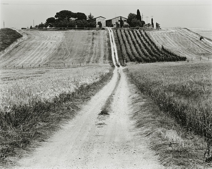 "Near Pienza, 2000, T81-0006-20-143, 8""x10"" silver chloride contact print"